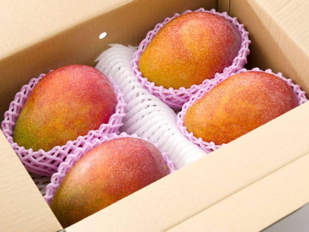 箱詰めマンゴー